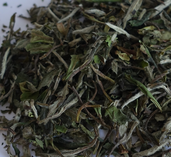 China Pai mu tan 50g