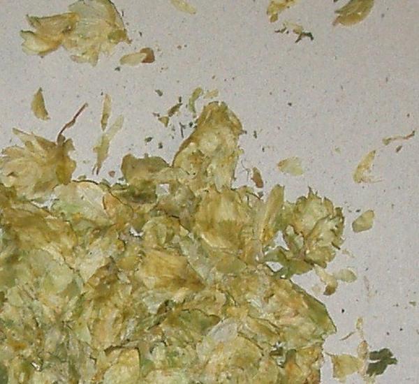 Hopbloemen Cluster 1kg