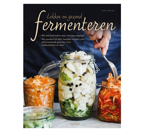 Lekker en gezond fermenteren (Brandes)