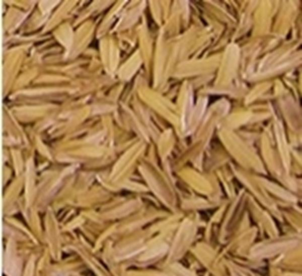 Enveloppes de riz 5kg